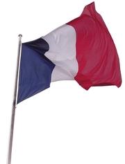 Репетиторство. французский язык