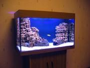 Продам аквариум без рыбок новый.
