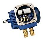 Редуктор,  вариатор,  электродвигатель,  частотный преобразователь