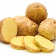 Продам картофель мелкий