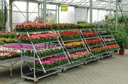 ВСЕ для садового центра