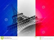 Опытный репетитор по французскому языку для детей и взрослых