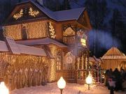 Поездки в Беловежскую пущу к Деду Морозу.Отдых для больших и маленьких
