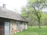 Дом под снос. 1949 г.п. Брестский р-н. Брус / черепица. r171012
