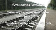Работа в Польше для разнорабочих на ремонт железной дороги
